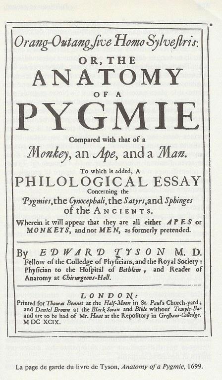 pygmie.jpg