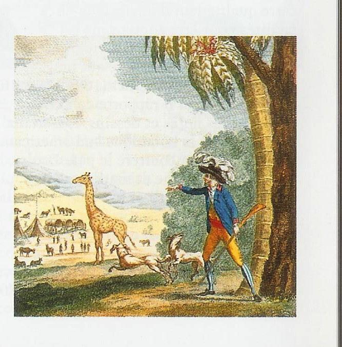 girafe1783.jpg