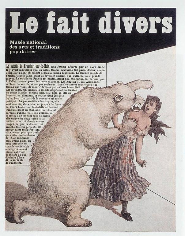 ours-violeur.jpg