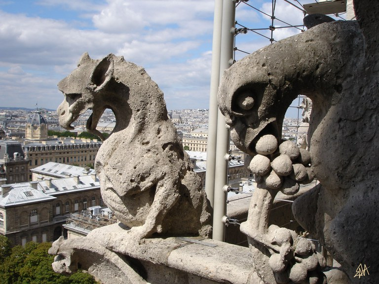 Dragon et Aigle