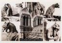 Carte postale: les Gargouilles de Notre-Dame de Paris