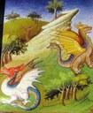 Marco Polo: bêtes fatastiques - vers 1410