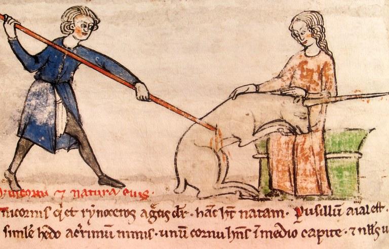 Mort de la licorne - XIII siècle