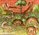 Traité de G. Phoebus - Loup - 1405