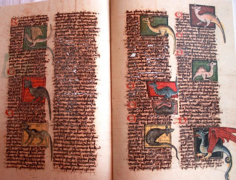 Dragons (vers 1470)